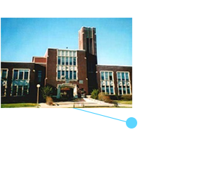 Participate in a study abroad program